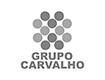 Grupo Carvalho logo
