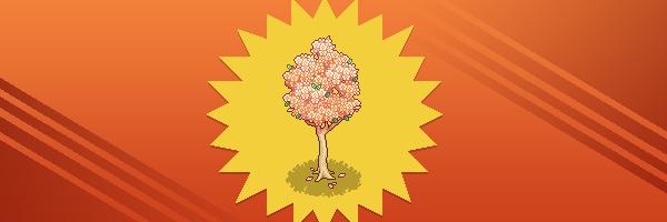 Immagini campagna Frutta di Marzo 2021 Feature_cata_hort_mar21_blossomtree