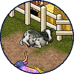 spromo_Cow_Pet_Article